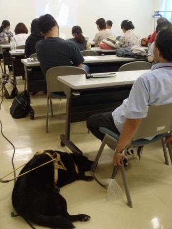 音声解説ゼミで盲導犬も一緒に音声解説のお勉強
