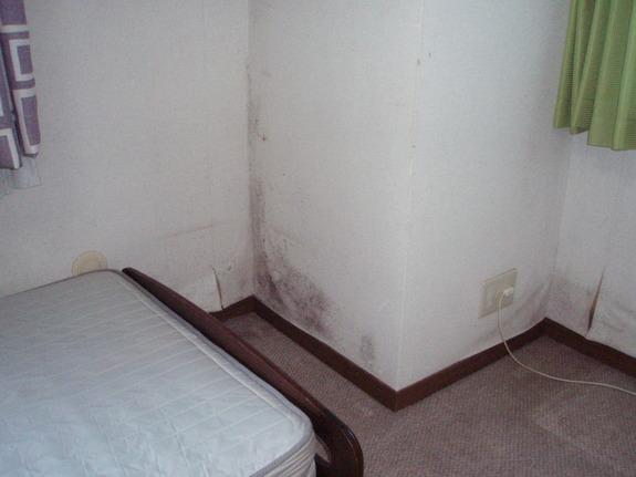 このカビの部屋を、健康・省エネに優れた部屋にするために映像とデータで実証!