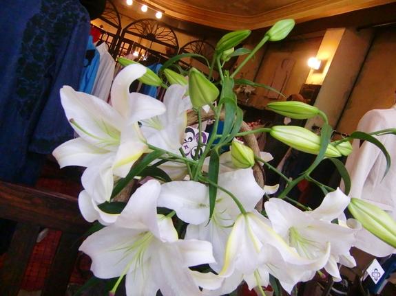 (四季折々の植物がトレードマークです。)