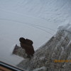 Thumb 2695c50b305e9010e8efa80368e6f8a18637f67a