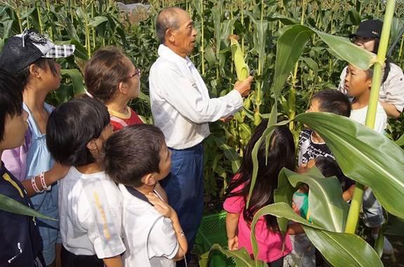 農家の方から野菜の作り方を勉強します