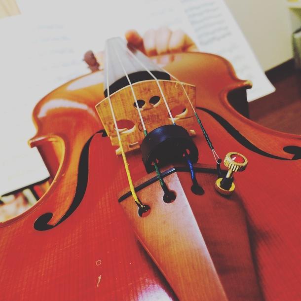 ヴァイオリンから見える世界です。