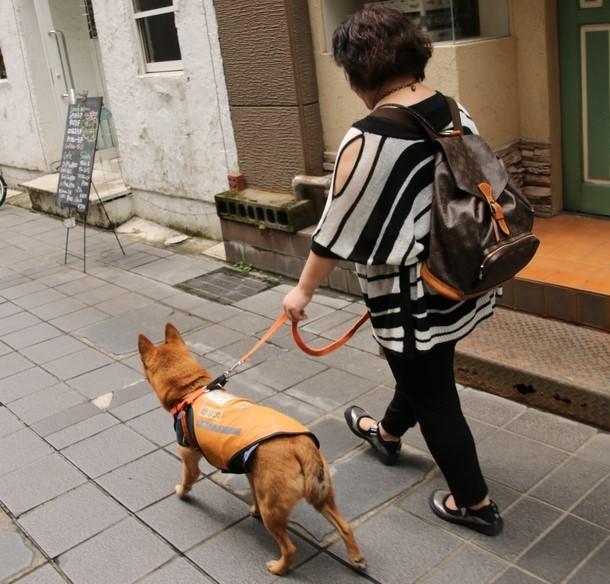 鹿児島にて美紀さんと聴導犬レオン