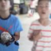 Thumb 94d27bac894571f6d6393069f5511ae2ab1344d9