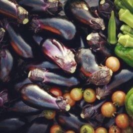 野菜 例2