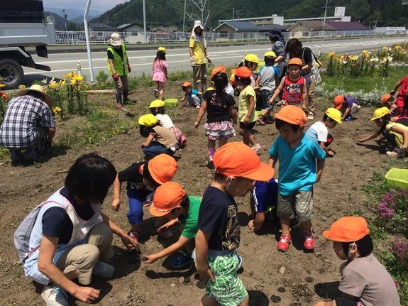 花壇に種ダンゴをまく子どもたち