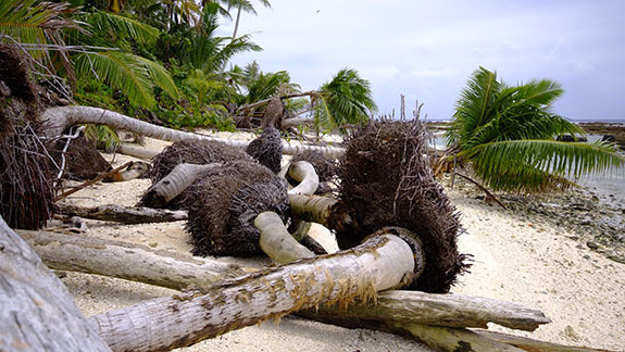 フナフチ環礁ファレフェケ島の海岸侵食
