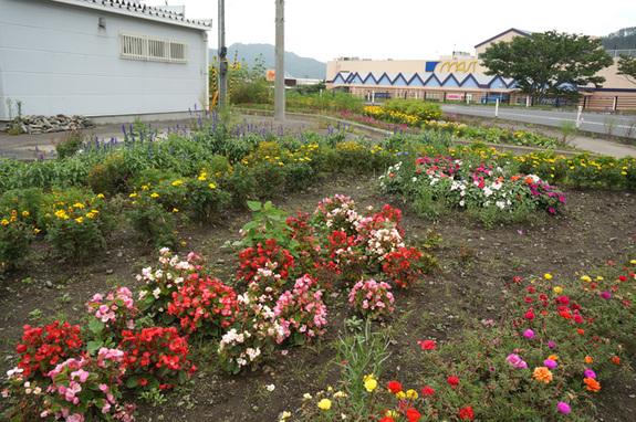 2014年9月の花壇