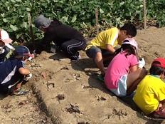 愛知県豊明市で不登校児童が安心して過ごせる場所を作りたい!