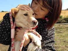 犬猫90頭保護施設、走行距離21万kmの活動車両を買い替えたい!