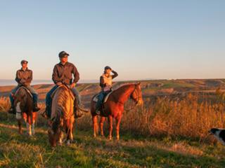 美しい阿蘇で非日常の乗馬体験の出来るエルパティオ牧場の復興へ