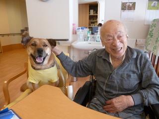 日本で唯一!ペットと暮らせる老人ホームの犬・猫達を守りたい